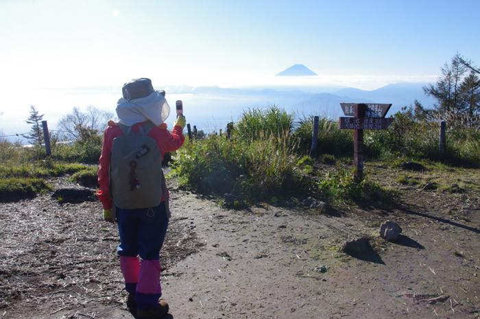 甘利山山頂から