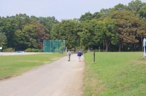 公園のはずれの森へと向かいました