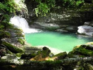 源流域のプール