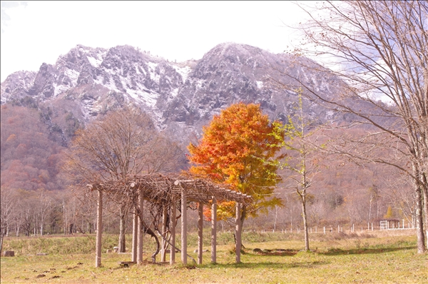 戸隠山と紅葉
