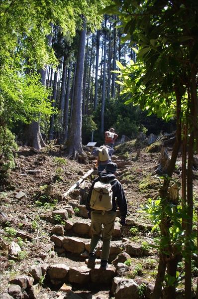 宝蔵院横の登山道