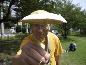 マントカラカサタケ