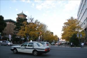 紅葉の横浜の街並み
