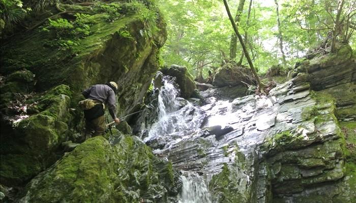 吉野川源流釣行