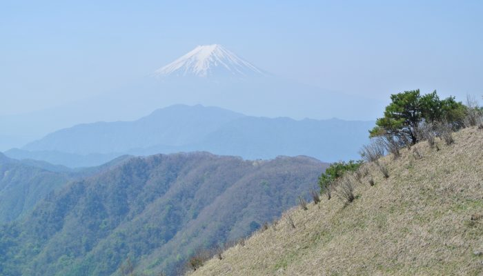 牛奥ノ雁ヶ腹摺山 ~ファミリー登山~